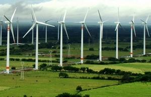 Eurus Wind Farm